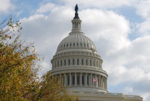 The insurrection will not be scrutinized in the Senate